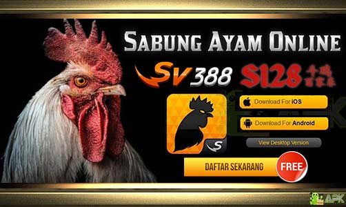 Agen Judi S128 Dan SV388 » Video Sabung Ayam Pisau Filipina post thumbnail image