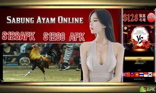 Bandar Judi S128 Sabung Ayam Online » Daftar Akun S1288 APK